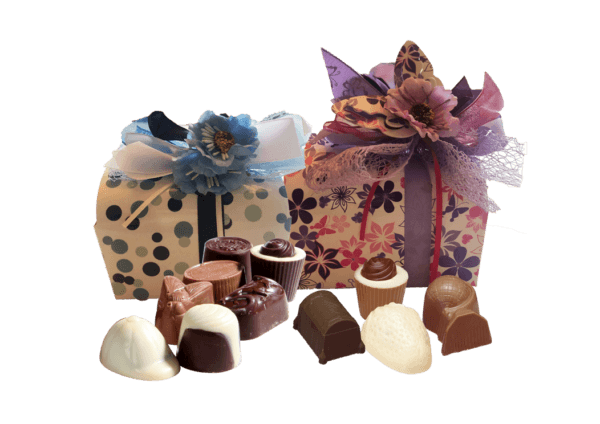 Bonbons Bakkerij 2in1